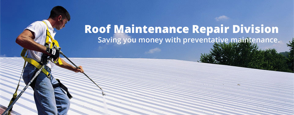 roof-maintenance-sprayer